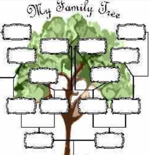 biareview com family tree maker