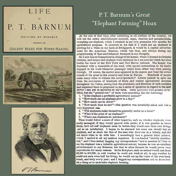 amazon The Life of PT Barnum - PT. Barnum reviews The Life of PT Barnum - PT. Barnum on amazon newest The Life of PT Barnum - PT. Barnum prices of The Life of PT Barnum - PT. Barnum The Life of PT Barnum - PT. Barnum deals best deals on The Life of PT Barnum - PT. Barnum buying a The Life of PT Barnum - PT. Barnum lastest The Life of PT Barnum - PT. Barnum what is a The Life of PT Barnum - PT. Barnum The Life of PT Barnum - PT. Barnum at amazon where to buy The Life of PT Barnum - PT. Barnum where can i you get a The Life of PT Barnum - PT. Barnum online purchase The Life of PT Barnum - PT. Barnum sale off discount cheapest The Life of PT Barnum - PT. Barnum  The Life of PT Barnum - PT. Barnum for sale amazon book marketing audio book marketing affiliate marketing book marketing analytics book best book on affiliate marketing best book about marketing book about marketing strategies book about influencer marketing book about marketing mix book about digital marketing ebook marketing ebook marketing online ebook marketing giỏi phải kiếm được tiền ebook marketing căn bản ebook marketing 4.0 ebook marketing facebook ebook marketing căn bản philip kotler brand book marketing best book marketing best book marketing strategies creative book marketing ideas christian book marketing children's book marketing comic book marketing strategies children's book marketing plan children's book marketing strategies children's book marketing plan template christian book marketing plan comic book marketing christian book marketing agents diy book marketing daniel hall book marketing different book marketing derek murphy book marketing decoded book marketing dan blank book marketing dan kennedy book marketing download book marketing management by philip kotler digital book marketing download book marketing eat your greens book marketing effective book marketing strategies effective book marketing example of a book marketing plan facebook marketing iclick facebook marketing facebook mar