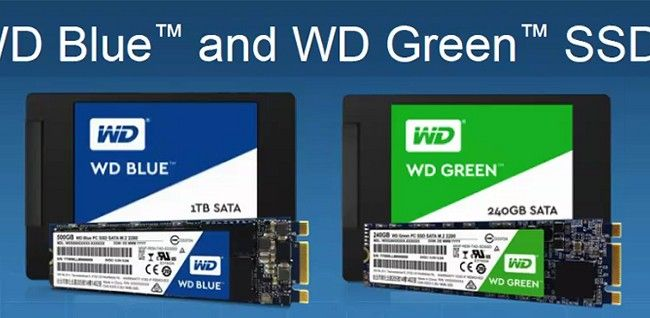amazon WD Blue SSD reviews WD Blue SSD on amazon newest WD Blue SSD prices of WD Blue SSD WD Blue SSD deals best deals on WD Blue SSD buying a WD Blue SSD lastest WD Blue SSD what is a WD Blue SSD WD Blue SSD at amazon where to buy WD Blue SSD where can i you get a WD Blue SSD online purchase WD Blue SSD WD Blue SSD sale off WD Blue SSD discount cheapest WD Blue SSD WD Blue SSD for sale