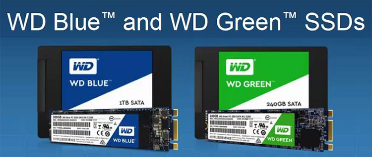 Wd Driver For Mac